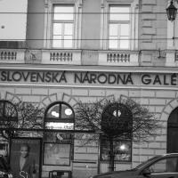 Rybovka 2019_SK_8